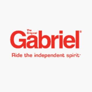 Gabriel-Shocks